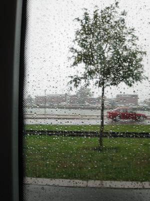 a car in rain