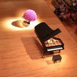 Ingrid Fuzjko Hemming Piano Soro Concert 2016